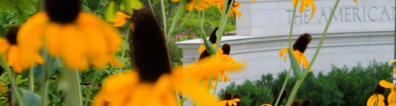 American University <span>Arboretum and Gardens</span>